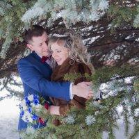 Зимняя свадьба :: Наталья Вельди