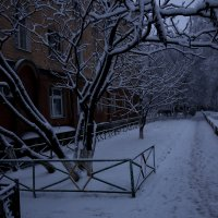 раннее утро января :: Вера Шамраева
