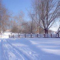 Мороз и солнце на Комсомольском озере . Минск :: Светлана З