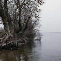 Осень :: Григорий Бортник