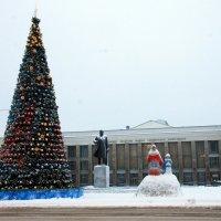 Елка на площади Победы в Северодвинске :: Светлана Ку
