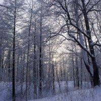 Редкий момент, когда солнце видно сквозь облака :: Sergey Lebedev