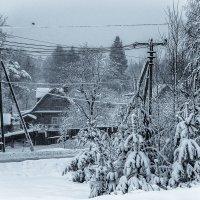 Зима, однако... :: Сергей В. Комаров