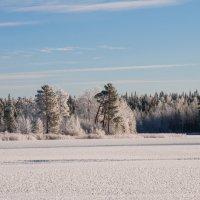 Зима :: Яна Старковская