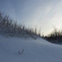 Северодвинск. У Белого моря. Небесный свет :: Владимир Шибинский