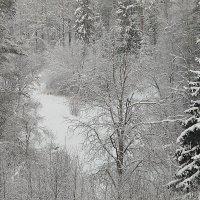 Речка спряталась под снегом :: Михаил Лобов (drakonmick)