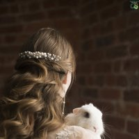 Свадебный зверек :: Евгения Лисина