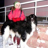 Девочка с  собакой... :: Vladimir Semenchukov