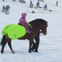 Можно и на лошадке прокатиться :: Вера Щукина