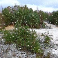 Падает снег :: Nina Yudicheva