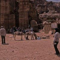 Обычный день в Иордании :: Валентина Потулова