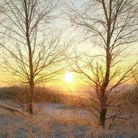 Зима :: Алексей