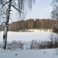 Зимний пейзаж :: Милешкин Владимир Алексеевич