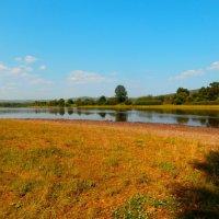 Река Хилок.Забайкалье :: Елена Фалилеева-Диомидова