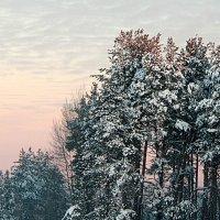 Зимнее. :: Николай Масляев