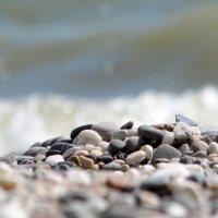 Морские камешки :: Владимир Л
