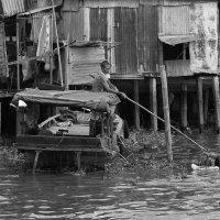 Жизнь на реке :: Татьяна Панчешная