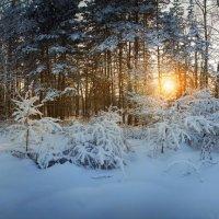 Сибирские закаты :: Павел Сухоребриков