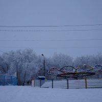 Безмолвный парк :: Оля Сухинина