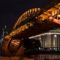 Пушкинский мост :: Eugene *