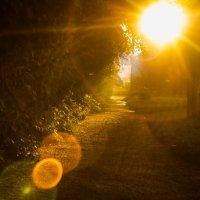 Солнечный зайчик на закате :: Сергей Мельниченко