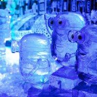 Ледяные миньоны :: Наталья Вендт Фотограф&Дизайнер