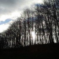 За холмом :: Вини Пух