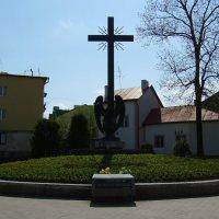 Памятник  борцам  за  волю  Украины  в  Дрогобыче :: Андрей  Васильевич Коляскин