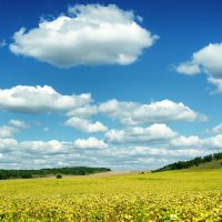 По дороге с облаками - 3 :: Ольга Савотина