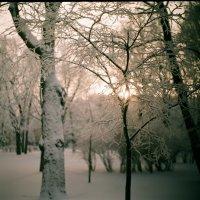 Зимнее утро в Санкт-Петербурге :: Ivan Zaytcev