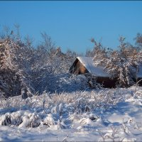 Зимний пейзаж :: Елена Ерошевич