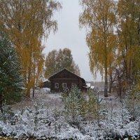 выпал снег :: Наталья Зимирева