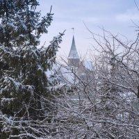 Зима по Калининградски. :: Виталий Латышонок
