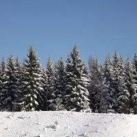 Зима... :: Эдвард Фогель