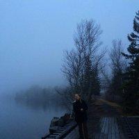На туманном берегу залива Фанди в Канаде. :: Одиноков Юрий