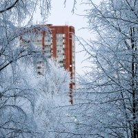 Зимнее утро :: Александра К