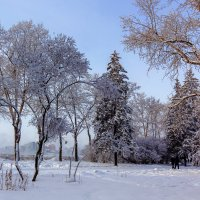 Зимний бульвар :: Анатолий Иргл