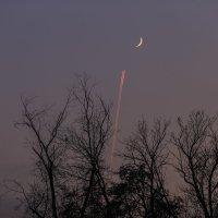 Полет на Луну :: Марат Макс