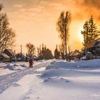 После снегопада. :: Александр Тулупов