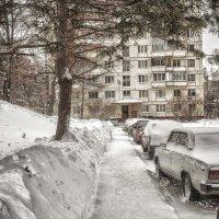 Зима в городе :: Андрей Михайлин