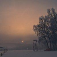 Туманное утро. :: cfysx