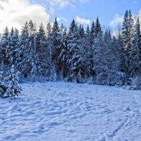Первый снег :: Александр Романов