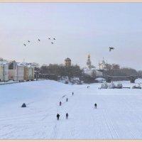 Утки летят... :: Vadim WadimS67