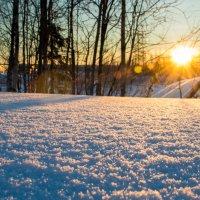 Первые солнечные дни :: Евгений Виличинский