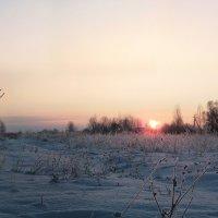 Утро :: Сергей Иванов