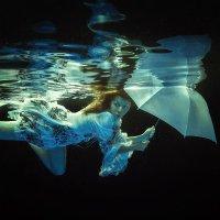 Why fish umbrella :: Дмитрий Лаудин