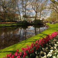 весна :: Валерий Струк