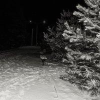 Ночной город :: Виталий Павлов