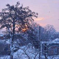 Воскресное утро :: sergey.redchenko Сергей Редченко