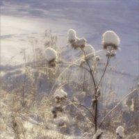 Волшебный цветок :: galina bronnikova